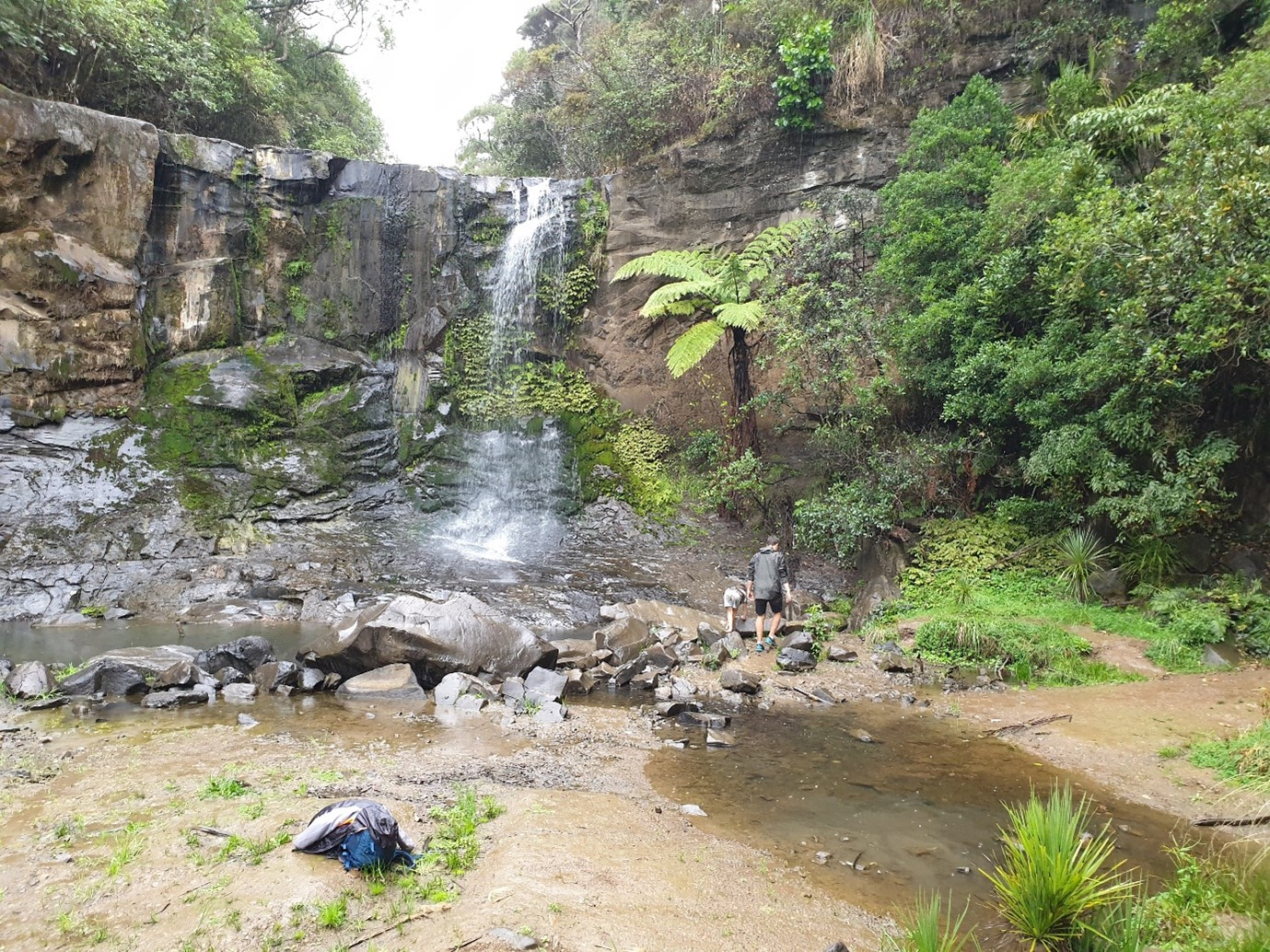 West-Auckland-Waterfall